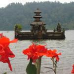 235.shrine in het meer