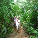 42.trekking door de jungle bij Bohorok