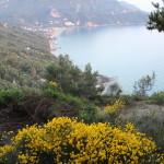 Corfu 2014 016