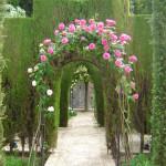 Alhambra tuinen