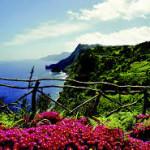 Madeira brug